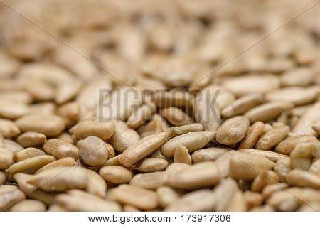 Heap of Sun flower seed background. Agriculture fruit of the sunflower (Helianthus annuus). Peeled from the husk