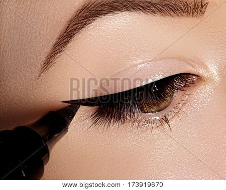 Fashion Woman Applying Eyeliner On Eyelid, Eyelash. Using Makeup Brush, Shape Black Line. Profession