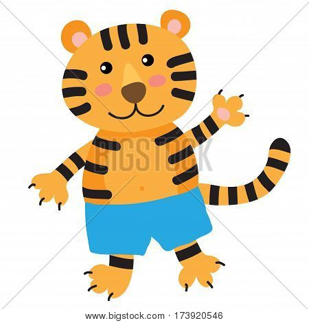 Cute cartoon tiger isolated on white background
