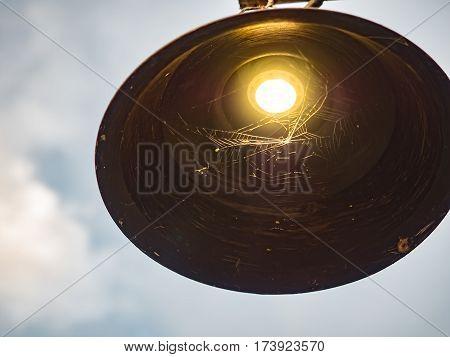 Close up lightbulb and spiderweb on sky