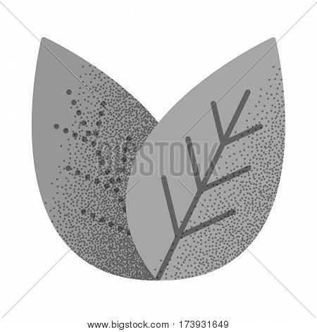 Set of black and white vintage tea icons with retro texture. Green tea leaves. Vintage design. Thin line leaf icon. Vector illustration isolated on white background.