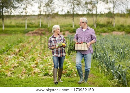 farming, gardening, agriculture, harvesting and people concept - senior couple with box of vegetables at farm