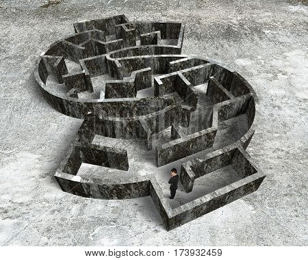Man Standing In Money Shape Maze