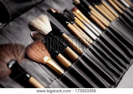Set Of Make-up Brushes. Tools For Professional Visage, Maskara, Eyeshadows, Foundation, Lipstick, Bl