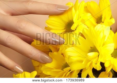 Manicured Nails With Natural Nail Polish. Manicure With Beige Nailpolish. Fashion Manicure. Shiny Ge