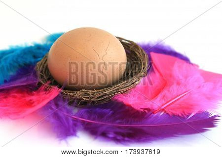 Easter egg in basket with colored feathers isolated on white background