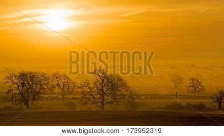 As the morning sun rises on a cold winter's day the mist rises from the dewy fields and blankets the landscape, only the trees stand out