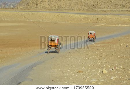The two chariots with tourists traveling to the pyramids of Giza. Cairo. Egypt