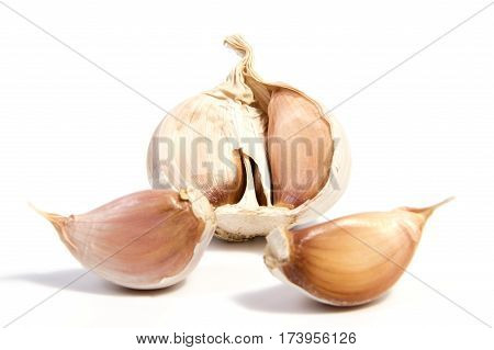 Fresh organic garlic and cutted garlic clove isolated on white background