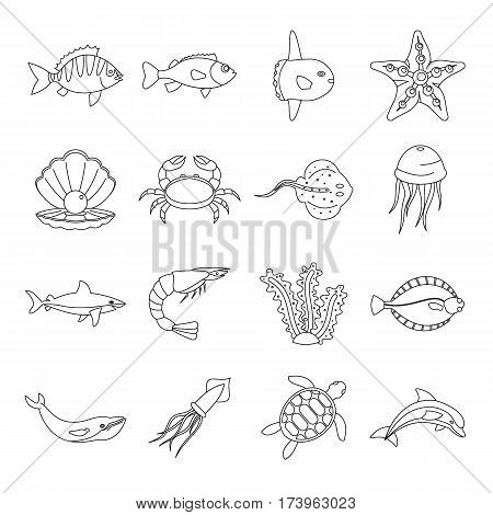 Sea animals icons set. Outline illustration of 16 sea animals vector icons for web