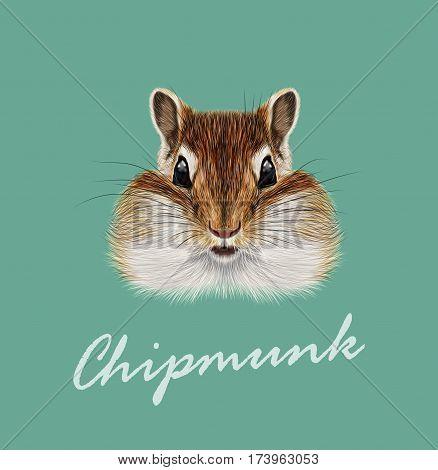 Vector Illustrated portrait of Chipmunk. Cute head of wild mammal on dark green background.