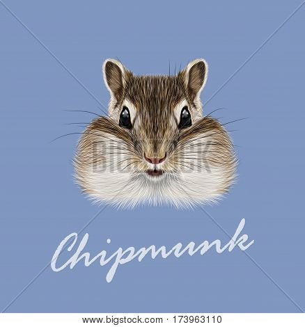 Vector Illustrated portrait of Chipmunk. Cute head of wild mammal on blue background.