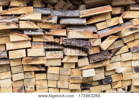 harvesting firewood. Firewood stacked in a row