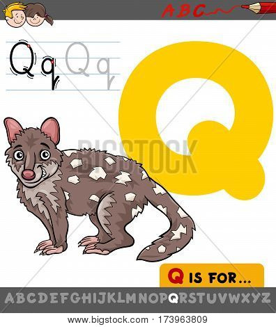 Letter Q With Cartoon Quoll
