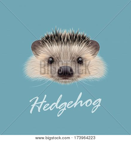Vector Illustrated portrait of Hedgehog. Cute head of wild spiny mammal on blue background.