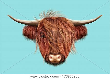 Illustrated portrait of Highland cattle. Cute head of Scottish cattle on blue background.