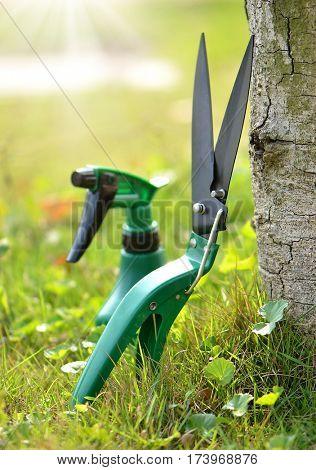 Garden tools scissors