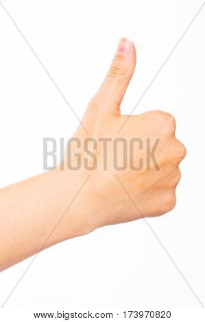 A human hand on a white background