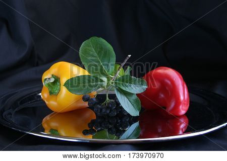 Still Life with a black mountain ash,green leaves, red pepper and yellow pepper on a mirrored tray