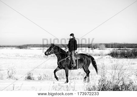 A cowgirl in winter gear riding a brown saddled horse in a black and white prairie winter landscape