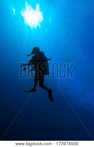 Underwater scene with the silhouette of a scuba diver in the background of the solar light Cuban diving
