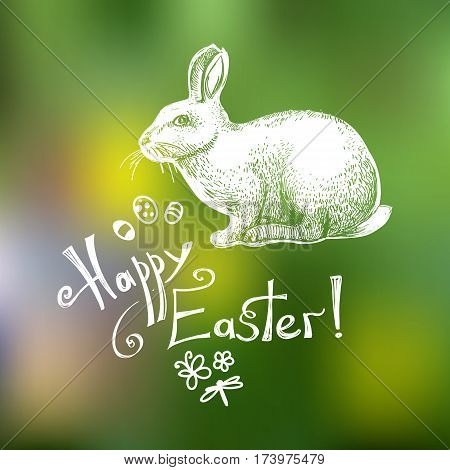 Happy Easter hand drawn greeting card template isolated on green blurry background. Doodle Easter sуmbols (eggs, bunny, butterfly, flower, dragonfly) and lettering composition. Vector illustration