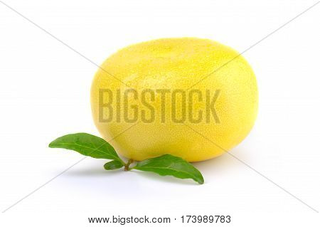 Single sweetie fruit isolated on white background cutout