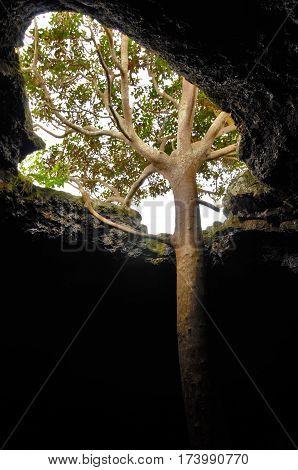 Ana Te Pahu Cave