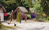 Traditional african malagasy huts in Maroantsetra region typical village in north east Madagascar Masoala national park Toamasina Province. poster