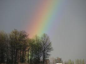 Rural Rainbow