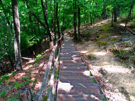 Steps Towards The Nature