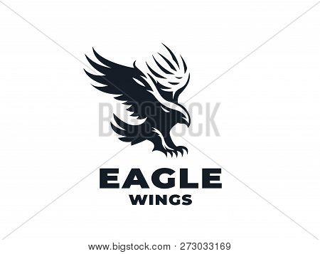 Bird Prey Eagle Hawk Vector Photo Free Trial Bigstock