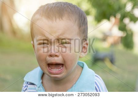 Crying Little Boy. Cry. Portrait Of Boy. Caucasian Child Looks At Camera. Charming Boy The Kid Cries