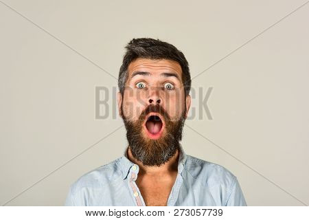 Astonished Man With Long Beard&mustache. Fashionable Bearded Male Portrait. Surprised Bearded Man In