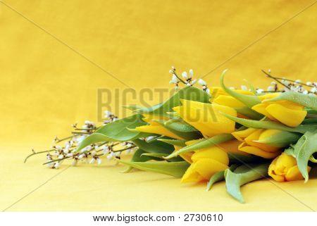 Bunch Of Yellow Tulips Tulips