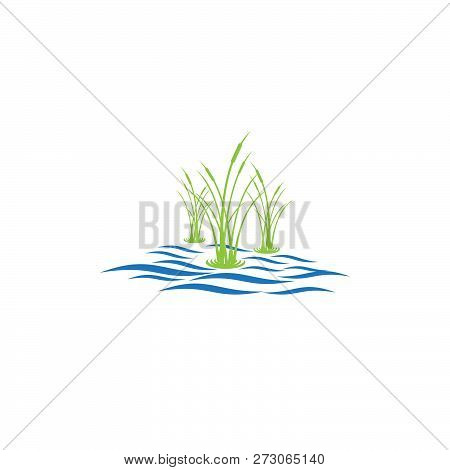 Wetland Logo And Vector, Wetland Ilustration Water And Reeds