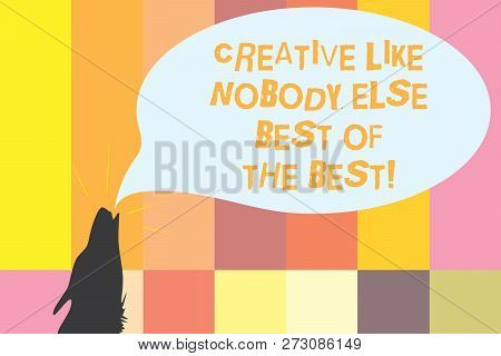 Word Writing Text Creative Like Nobody Else Best Of The Best. Business Concept For High Quality Crea