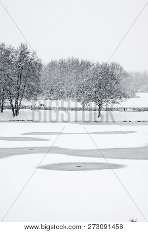 Winter Snow Scene With Trees Across Frozen Lake