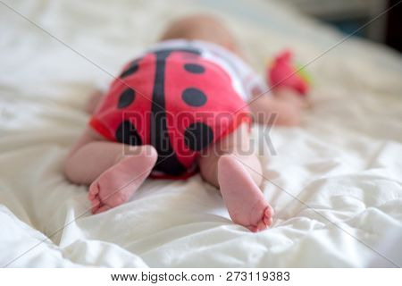 Booty Baby In The Body In The Form Of A Ladybug. A Newborn Baby Is Lying On The Belly. Baby Is Tryin