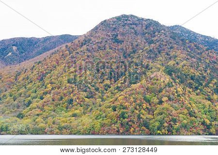 Lake Chuzenji is a scenic lake in the mountains above the town of Nikko. It is located at the foot of Mount Nantai, Nikko's sacred volcano, whose eruption blocked the valley below, thereby creating Lake Chuzenji about 20,000 years ago. poster