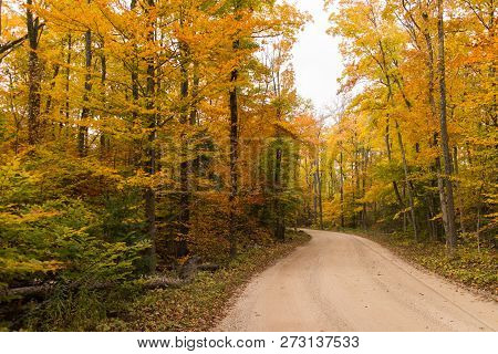 A Dirt Road Through A Colorful Autumn Forest.  Ellison Bluff State Natural Area, Ellison Bay, Wiscon