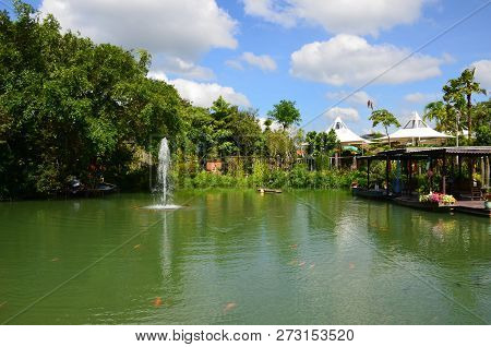 Landscape Of A Green Pond With Red Carps And A Fountain On The Background Of Green Trees On A Sunny