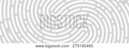 Fingerprint Background, Print, Banner Identification Vector Illustration