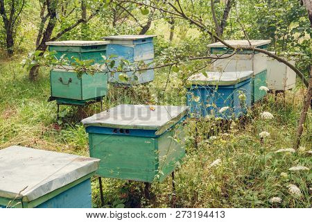 Row Of Color Wooden Beehives In The Garden