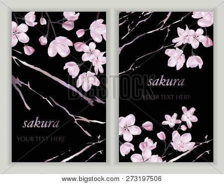 Vector Banners Set With Cherry Blossom. Blossoming Sakura Branch. Template For Greeting Cards, Weddi