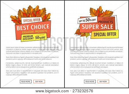 Exclusive Products Buy Now Posters With Oak Leaves. Vector Autumn Sale Emblem Yellow Foliage. Best C