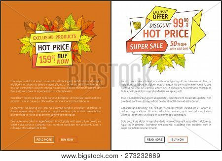 Hot Price Exclusive Products Buy Now At Super Hot Offer 159.90 Promo Posters With Oak And Maple Leav