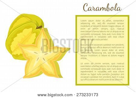Carambola Or Starfruit Exotic Fruit Whole And Cut Vector Poster With Frame For Text. Tropical Edible