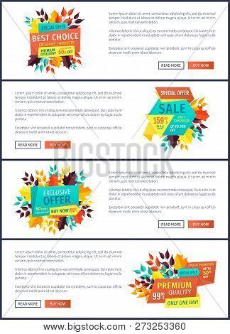 Best Choice Special Autumn Offer Posters Set. Seasonal Proposition Banners With Autumnal Leaves. Sal