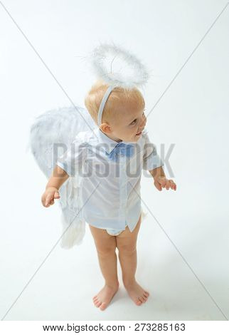 Taking On A Holiday Atmosphere. Baby Angel. Adorable Little Angel Boy. Little Boy With Angel Wings A